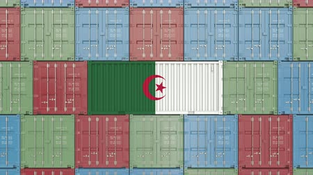 recipiente : Container with flag of Algeria. Algerian goods related conceptual 3D animation