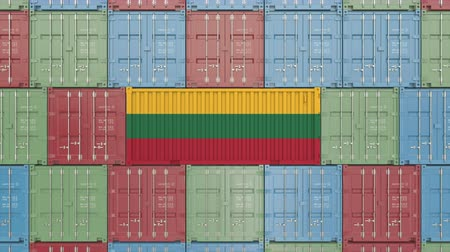 flag of lithuania : Container with flag of Lithuania. Lithuanian goods related conceptual 3D animation
