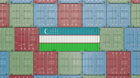 oezbekistan : Container with flag of Uzbekistan. Uzbek goods related conceptual 3D animation Stockvideo