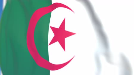 algeria : Flying national flag of Algeria close-up, loopable 3D animation Stock Footage
