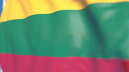 flag of lithuania : Waving national flag of Lithuania close-up, loopable 3D animation