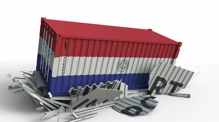 csattanás : Cargo container with flag of Paraguay breaks container with IMPORT text. Conceptual 3D animation