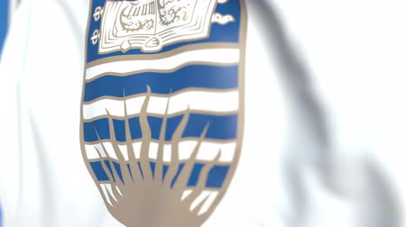 symbolic : Waving flag with University of British Columbia emblem, close-up. Editorial loopable 3D animation