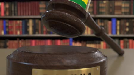jurisdiction : Flag of Bolivia on falling judges gavel in court. National justice or jurisdiction related conceptual 3D animation Stock Footage