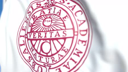 symbolic : Flying flag with Uppsala University emblem, close-up. Editorial loopable 3D animation