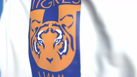 yetiştirmek : Flying flag with Tigres Uanl football club logo, close-up. Editorial loopable 3D animation Stok Video