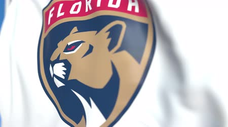 panthers : Waving flag with Florida Panthers NHL hockey team logo, close-up. Editorial loopable 3D animation