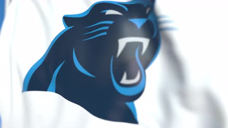 panthers : Flying flag with Carolina Panthers team logo, close-up. Editorial loopable 3D animation Stock Footage