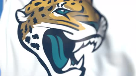 symbolic : Flying flag with Jacksonville Jaguars team logo, close-up. Editorial loopable 3D animation