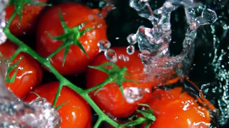 wetness : Bunch of cherry tomatoes falls into water, slow motion shot Stock Footage