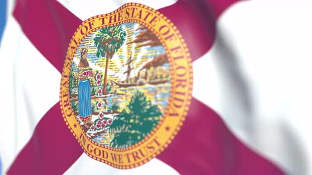 explodindo : Waving flag of Florida. Close-up, loopable 3D animation Stock Footage