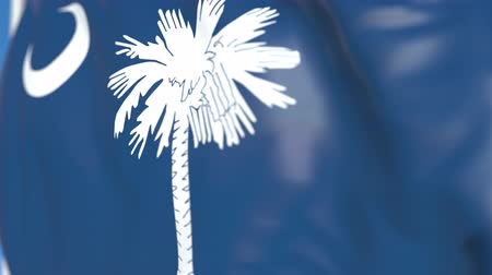 soar : Flying flag of South Carolina. Close-up, loopable 3D animation