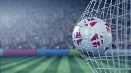 deense dog : Flag of Denmark on the football hitting goal net back. Realistic slow motion 3D animation