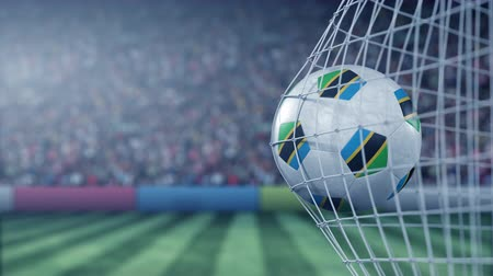 Танзания : Flag of Tanzania on the football hitting goal net back. Realistic slow motion 3D animation
