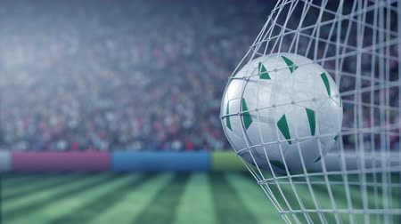 nigeria flag : Flag of Nigeria on the ball in football net. Conceptual 3D animation Stock Footage