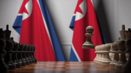 dprk : Flags of North Korea behind pawns on the chessboard. Chess game or political rivalry related 3D animation Stock Footage