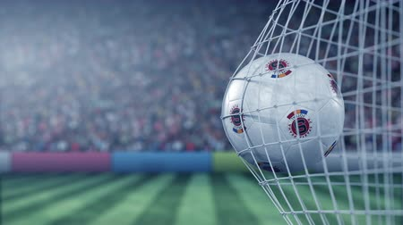 арена : Ball with Sparta Prague football club logo hits football goal net. Conceptual editorial 3D animation