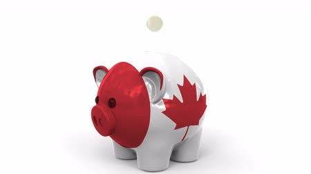 canadense : Coins fall into piggy bank painted with flag of Canada. National banking system or savings related conceptual 3D animation