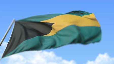 společenství : Waving national flag of the Commonwealth of The Bahamas, low angle view. Loopable realistic slow motion 3D animation Dostupné videozáznamy