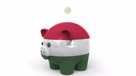 kuruş : Coins fall into piggy bank painted with flag of Hungary. National banking system or savings related conceptual 3D animation Stok Video