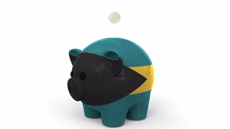 fondo industrial : Coins fall into piggy bank painted with flag of Bahamas. National banking system or savings related conceptual 3D animation Archivo de Video