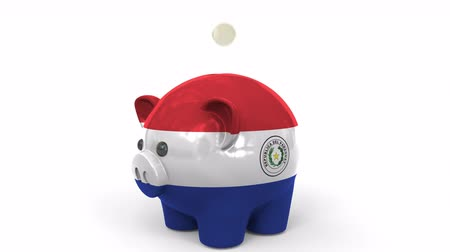 centavo : Coins fall into piggy bank painted with flag of Paraguay. National banking system or savings related conceptual 3D animation