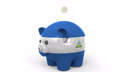 nicaraguan : Coins fall into piggy bank painted with flag of Nicaragua. National banking system or savings related conceptual 3D animation