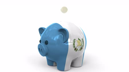 penny : Coins fall into piggy bank painted with flag of Guatemala. National banking system or savings related conceptual 3D animation