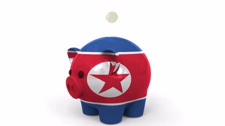 dprk : Coins fall into piggy bank painted with flag of North Korea. National banking system or savings related conceptual 3D animation Stock Footage