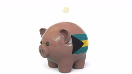 penny : Putting money into piggy bank with flag of Bahamas. Tax system system or savings related conceptual 3D animation