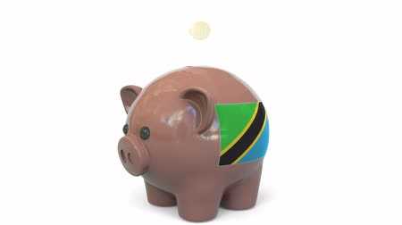 kuruş : Putting money into piggy bank with flag of Tanzania. Tax system system or savings related conceptual 3D animation Stok Video