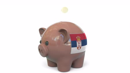 kuruş : Putting money into piggy bank with flag of Serbia. Tax system system or savings related conceptual 3D animation