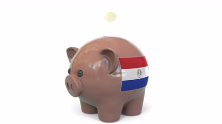 penny : Putting money into piggy bank with flag of Paraguay. Tax system system or savings related conceptual 3D animation