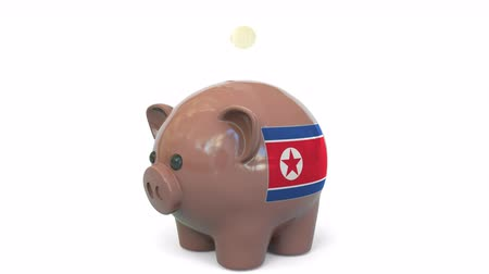 dprk : Putting money into piggy bank with flag of North Korea. Tax system system or savings related conceptual 3D animation Stock Footage