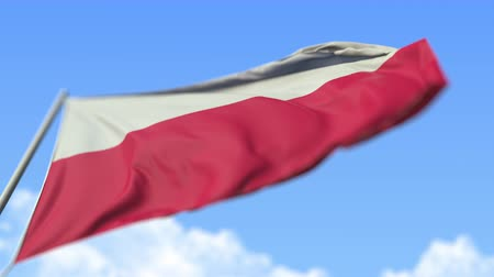 view from below : Waving national flag of Poland, low angle view. Loopable realistic slow motion 3D animation Stock Footage