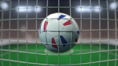 french team : Football with flags of France hits goal net. Slow motion 3D animation