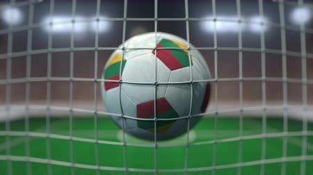 flag of lithuania : Football with flags of Lithuania hits goal net. Slow motion 3D animation