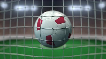 cíle : Football with flags of Malta hits goal net. Slow motion 3D animation Dostupné videozáznamy