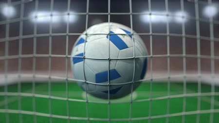 stadyum : Football with flags of Nicaragua hits goal net. Slow motion 3D animation Stok Video