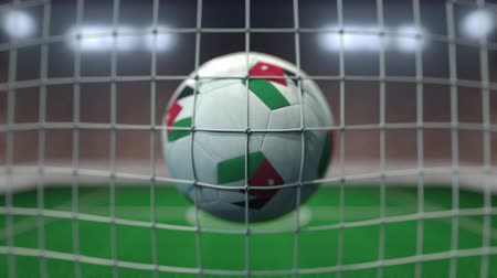 Иордания : Football with flags of Jordan hits goal net. Slow motion 3D animation