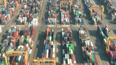 crane fly : Aerial hyperlapse of a busy seaport container yard