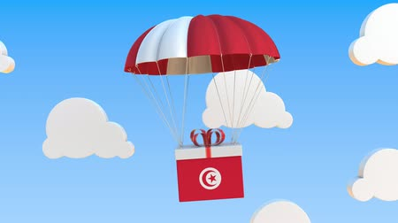 tunesie : Carton with flag of Tunisia falls with a parachute. Loopable conceptual 3D animation Stockvideo