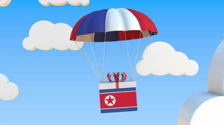 corée du nord : Carton with flag of North Korea falls with a parachute. Loopable conceptual 3D animation Vidéos Libres De Droits