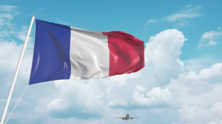 arrive : Plane arrives to airport with national flag of France. French tourism Stock Footage