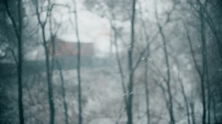 отступление : Defocused secluded cabin in the woods in heavy snow, slow motion shot