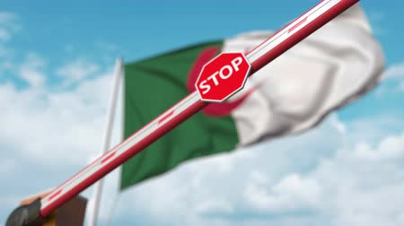 algeria : Barrier gate being closed with flag of Algeria as a background. Algerian restricted entry or certain ban Stock Footage