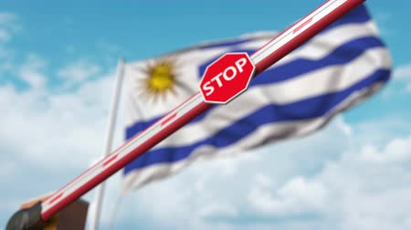 определенный : Closing boom barrier with stop sign against the Uruguayan flag. Restricted entry or certain ban in Uruguay Стоковые видеозаписи