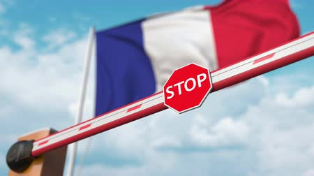 authorise : Barrier gate being opened with flag of France as a background. French Free entry or lifting a ban