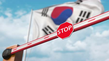 gümrük : Open boom gate on the South Korean flag background. Free border crossing or lifting a ban in South Korea Stok Video