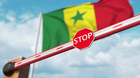 authorise : Open boom gate on the Senegalese flag background. Free entry or lifting a ban in Senegal